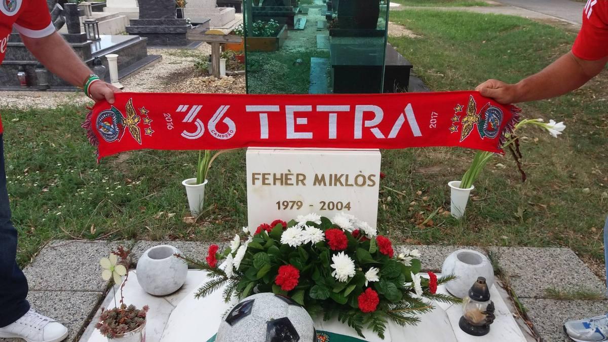 Um caso raro de devoção por Miklos Feher e pelo Benfica